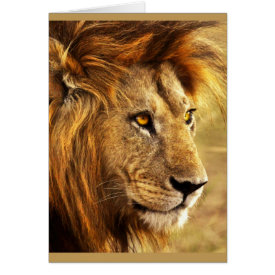 The Noble Lion Photograph Card