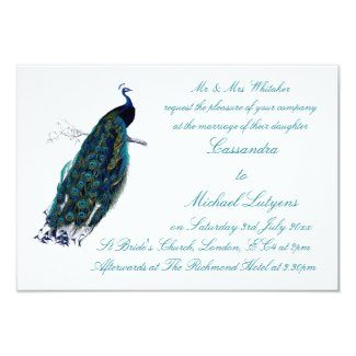 The Peacock Collection Wedding Invite 9 Cm X 13 Cm Invitation Card