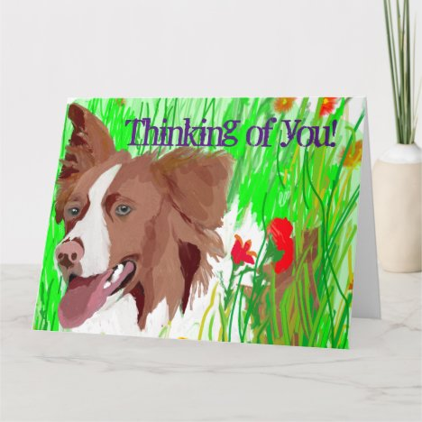 Thinking of You Beautiful Border Collie Love Card