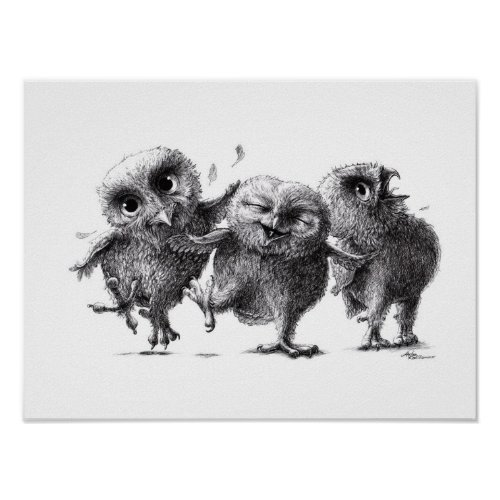 Three Crazy Owls - Owls Poster