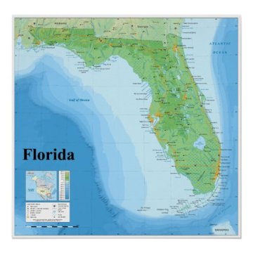 Topographic Map of the American State of Florida Poster   Zazzle com Topographic Map of the American State of Florida Poster