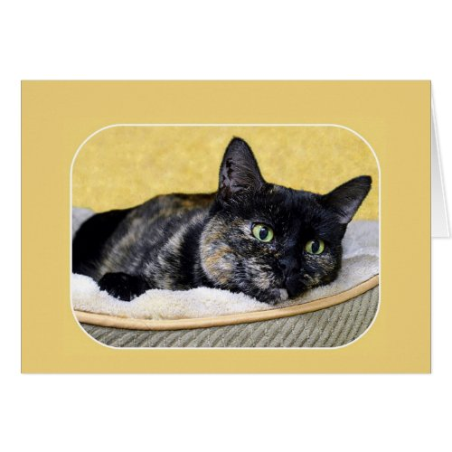 Tortoiseshell Cat Thinking Card