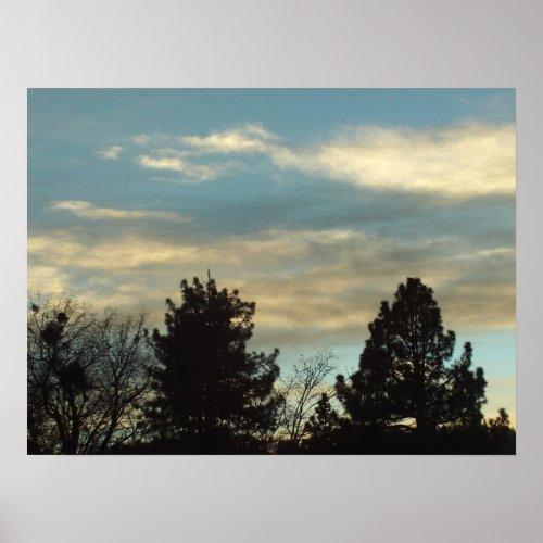 Trees In The San Bernardino Mountains Poster print