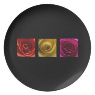 Triptych Roses orange yellow pink plate