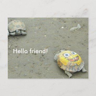 Turtle fan SpongeBob Postcard