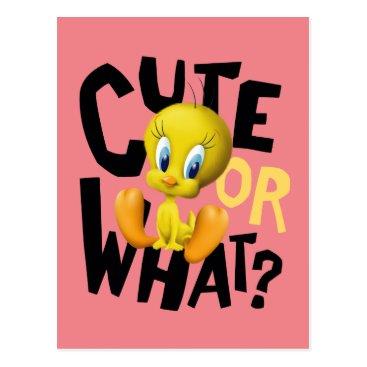 TWEETY™- Cute Or What? Postcard
