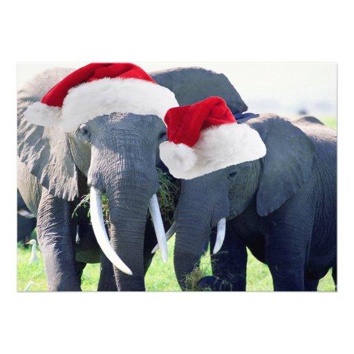 Christmas Elephants Cards Christmas Elephants Card