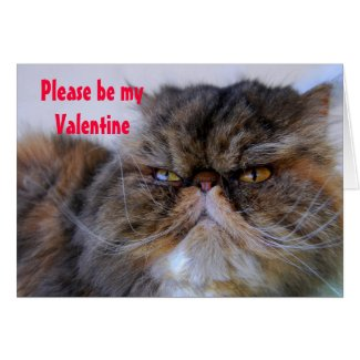 Valentine Humor Calico Persian Kitty Card