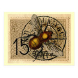 ❤️ Vintage Bee Collage Postcard