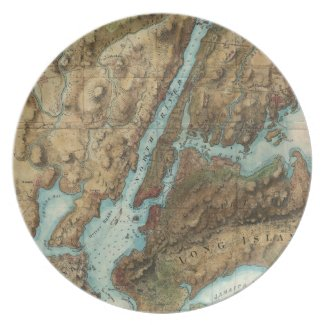 Vintage Map of New York City Harbor (1864) Party Plate