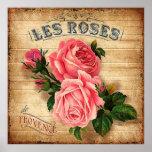❤️ Les Roses Vintage Pink Roses Poster