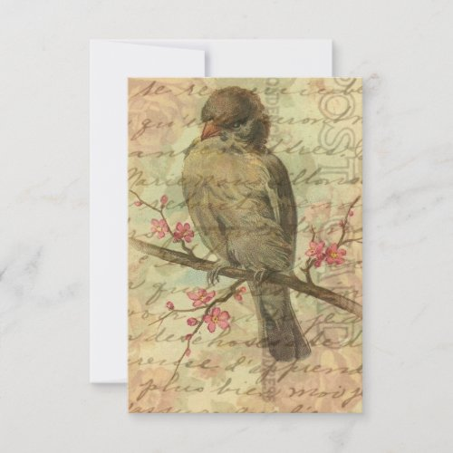 Vintage Sparrow Save The Date For Wedding