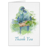 Watercolor Blue Parrot Tropical Wedding Thank you Card