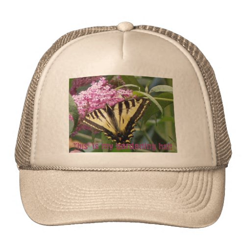 Western Tiger Swallowtail butterfly on pink lilacs hat