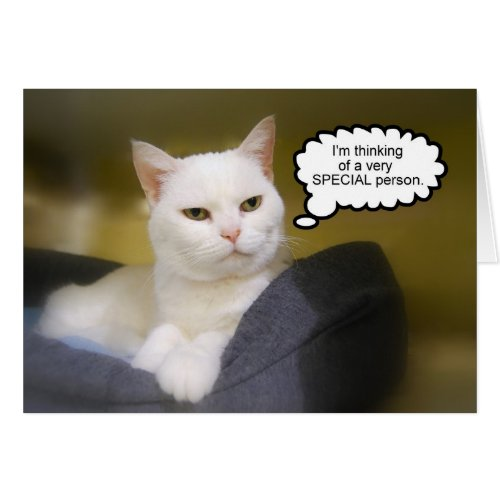 White Cat Birthday Humor Card