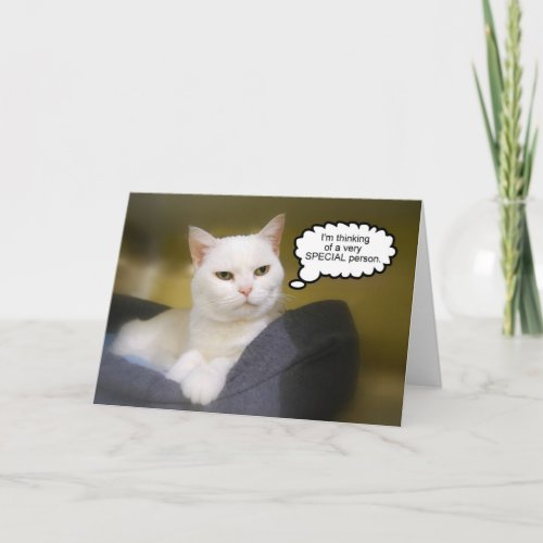 White Cat Birthday Sister Humor Card card