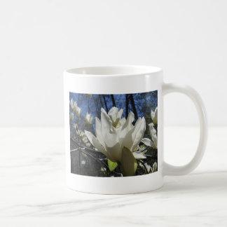 White Magnolia in North Carolina Coffee Mugs