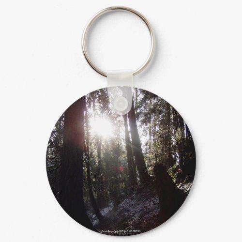 Winter Sunrays #16 keychain