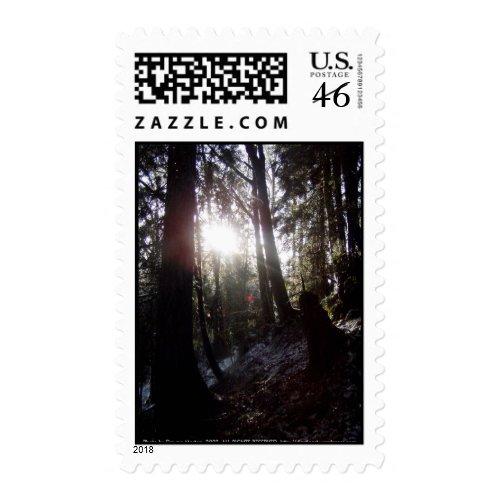 Winter Sunrays #16 stamp