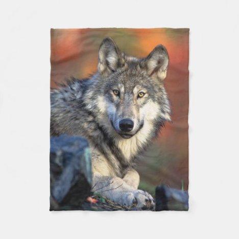 Wolf Photograph Fleece Blanket