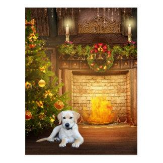 Yellow Labrador Retriever Christmas Cards Zazzle