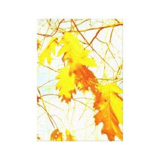 Yellow leaves wrappedcanvas
