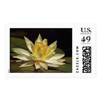 Yellow Lotus Flower Postage Stamp