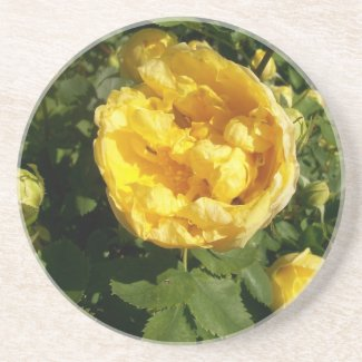 Yellow Roses Coaster coaster