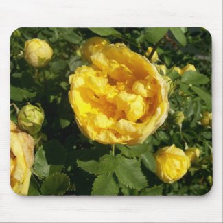 Yellow Roses Mousepad mousepad