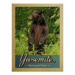 Yosemite National Park Vintage Bear Poster