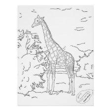 Young Male Giraffe Sketch Large Coloring Poster