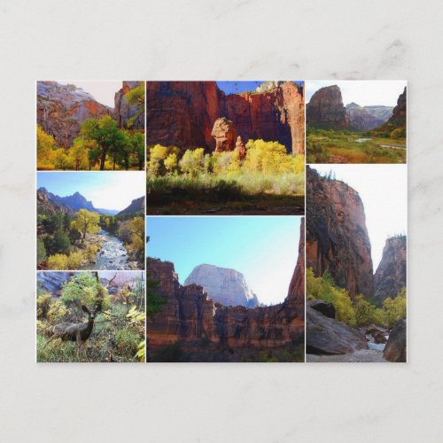 Zion National Park, Utah, Collage Postcard postcard
