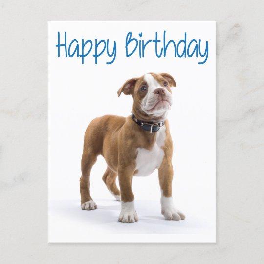Happy Birthday Boxer Welpe Dog Postard Postkarte Zazzle De