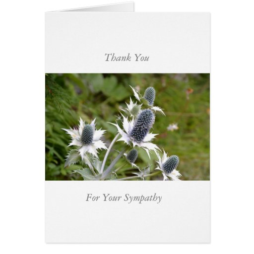 Sample Funeral Thank You Notes After Funeral Thank You