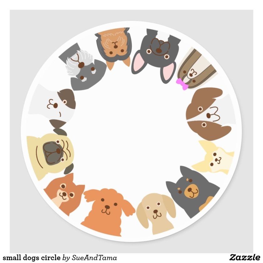 small dogs circle