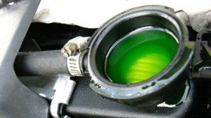 engine coolant