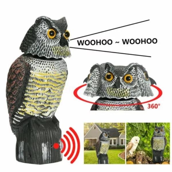 Sova strašilo – rasterivač ptica i sitnih životinja (zvučna)