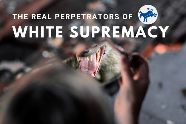 Democrats are the Real White Supremists
