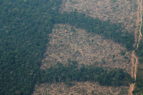 Vista aérea de áreas deforestadas de la selva amazónica de Porto Velho, Rondonia (Brasil) con el lado derecho calcinado por los incendios. EFE/ Joédson Alves/Archivo