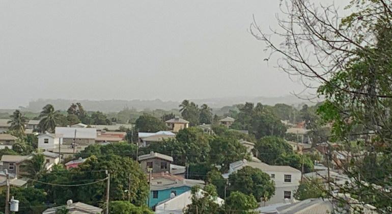 POLVO AFRICANO