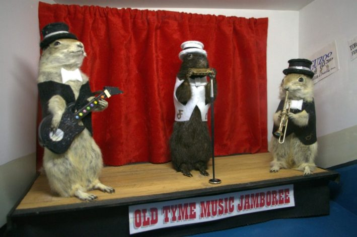 Olde Tyme Jamboree Gopher Hole Museum taxidermy funny