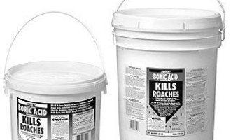 Best roach killer boric acid