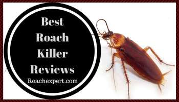 Top 6 Best Ultrasonic Pest Repellers Reviews (2019 Upgraded)
