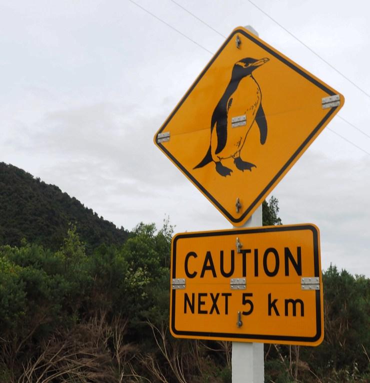 Pinguin-Tafel