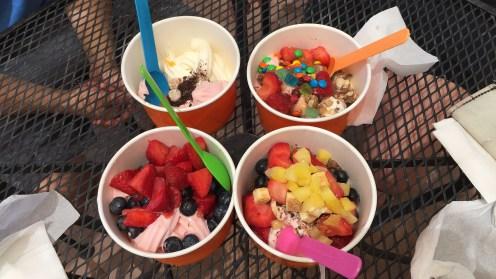 Köstliches Frozen Yogurt