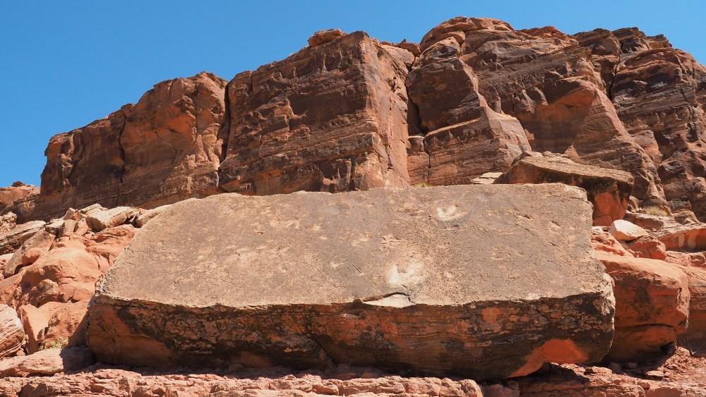 Dinosaurier Spuren auf dem Weg zu den Poison Spider Petroglyphen Panels