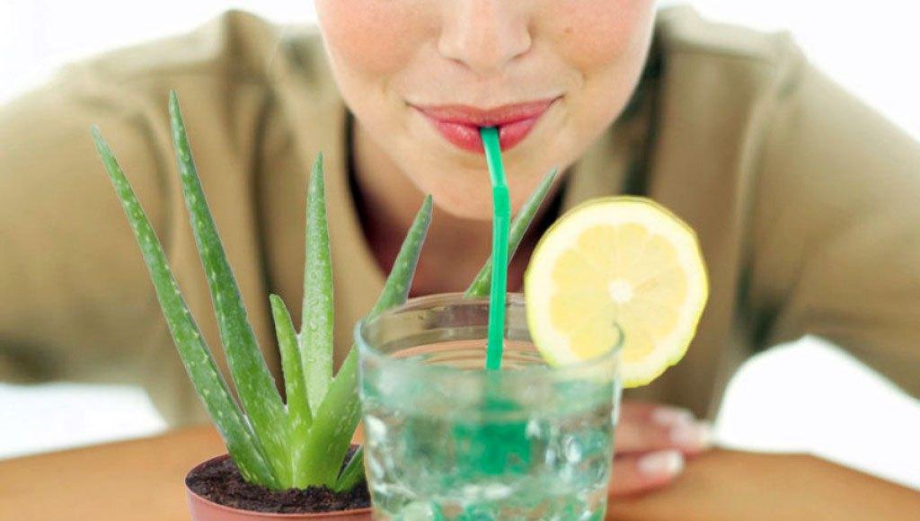 3 Ways to Enjoy Aloe Vera Juice for Health and Beauty