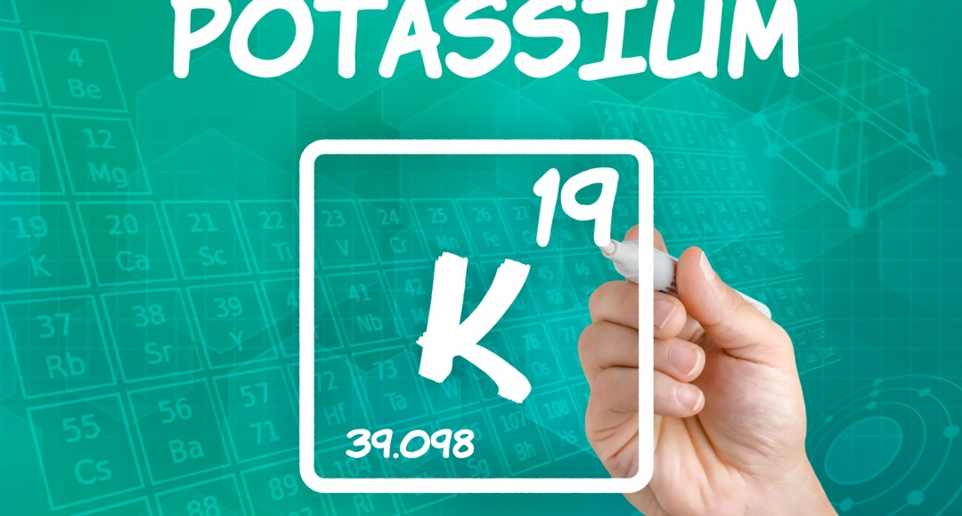 Zenith Nutrition Potassium Citrate Supplement Facts & Review