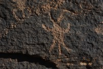Petroglyph for spider