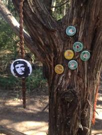 Oak Cliff Nature Preserve Loop 1